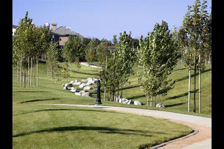 Amerige Heights park 2