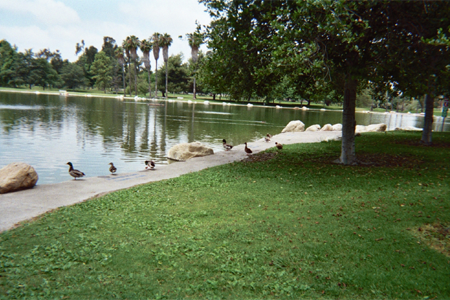 fountain valley mile square park2