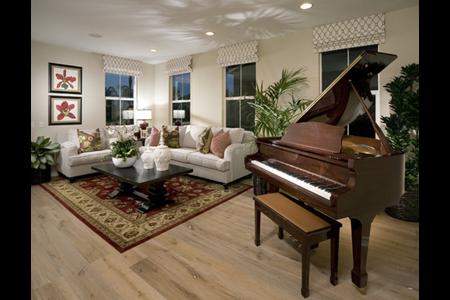 hampton buena park living room