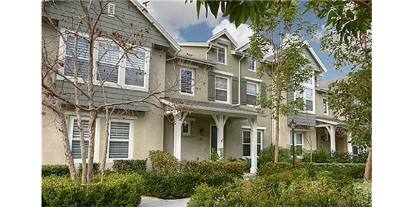 Ladera Ranch Terramor Branches